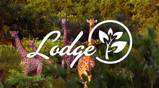 Lodge Hotels